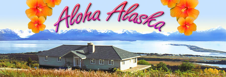 photo of property with vast Alaskan landscape. Hawaiian flowers adorn the top of the banner- Aloha Alaska