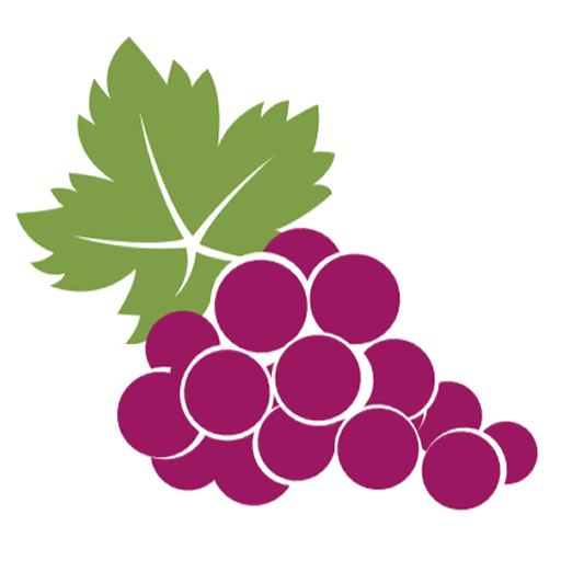Stencil style illustration of a freshly picked bunch of purple grapes with large green leaves