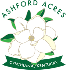 ornate overlay style illustration in hues of green, white, and yellow of the opt of a large white flower, above in text reads ASHFORD ACRES