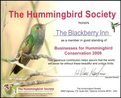The Hummingbird Society