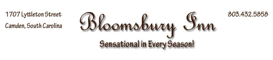 Bloomsbury Inn