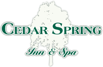 logo - Cedar Spring inn & Spa