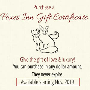foxes inn gift certificates