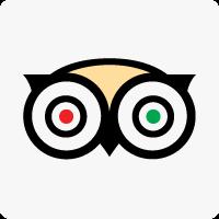 Trip Advisor Social Icon