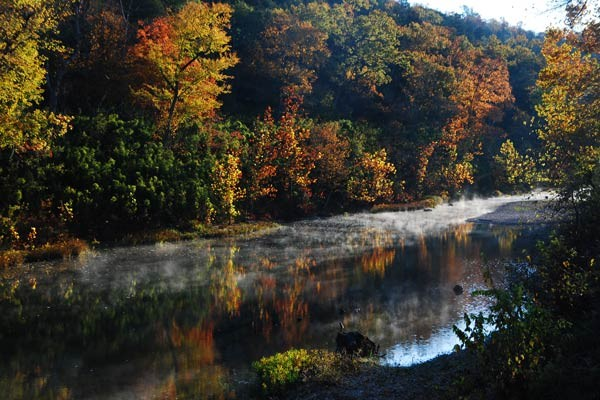 Nature Photo King's River Fall season