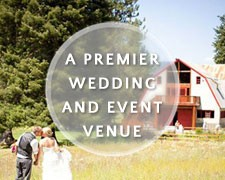 premier weddings