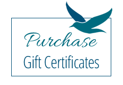 purchase a seagull inn gift certificate