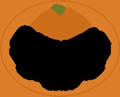 Southern Seasons Inn Logo