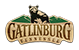 Gatlinburg Chamber of Commerce affiliate badge