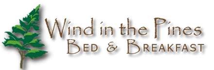 business footer logo. Pine tree and business name